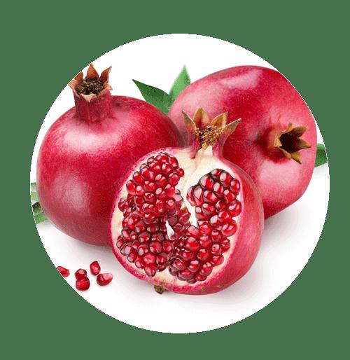 ikhrah.com - Pomegranate (Buah Delima)